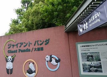 0424パンダ舎.jpg